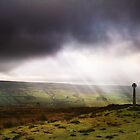 Rosedale Light by Jim Barter