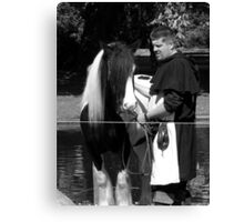 Horse and groom Canvas Print
