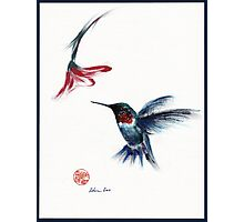ANGEL - hummingbird & flower painting/drawing Photographic Print