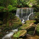 A little bit of paradise by Michael Matthews
