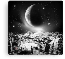 Moonlight Serenade-wall art+ products design Canvas Print