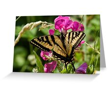 Wild Sweet peas & Butterfly Wings Greeting Card
