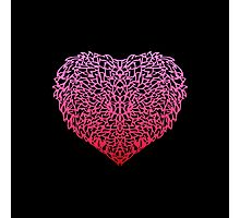 Pink Love Photographic Print