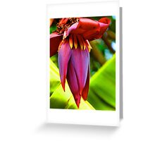 Banana Flower Glow Greeting Card