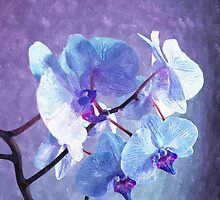 Blue Orchid-Art Prints-Mugs,Cases,Duvets,T Shirts,Stickers,etc by Robert Burns