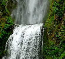 The tallest waterfall in the State of Oregon by Elaine Bawden