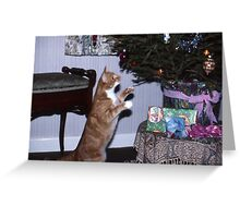 Is there something for me ? Greeting Card