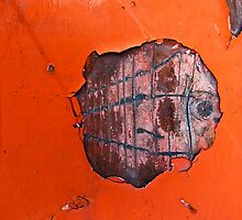 orange waffle fish by g richard anderson