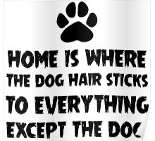 Dog Hair, Witty Poster