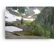 trail in heather meadows, wa, usa Metal Print