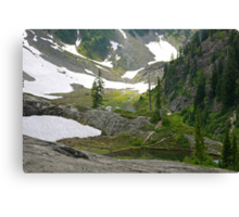 trail in heather meadows, wa, usa Canvas Print