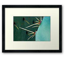 Cactus Macro Framed Print
