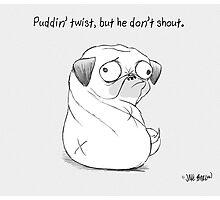Puddin' twist, but he don't shout. Photographic Print