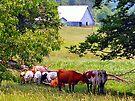 Farm Days by Grinch/R. Pross