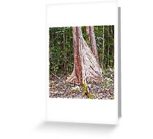 Beautiful buttress roots Greeting Card