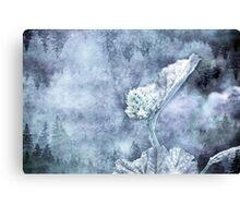 Miraculous Winter Canvas Print