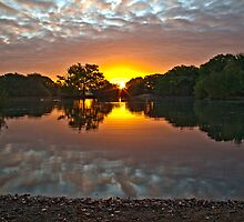 Epping Forest Sunrise by Gary Rayner
