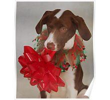 Christmas Pup Poster