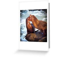 Sea Lions in La Jolla Cove Greeting Card