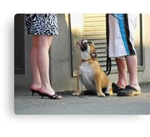 Look at Me, Lady! Look at Me, Too! Canvas Print