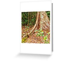 Beautiful textured buttress root  Greeting Card