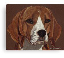 Beagle Vignette Canvas Print