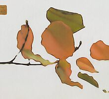 Shapes Of Fall 1 by Terry Hinkle