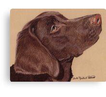 Labrador Retriever Vignette Canvas Print
