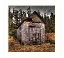 The Old Shed Art Print
