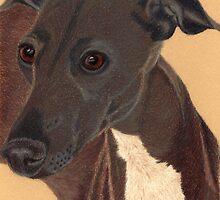 Italian Greyhound Vignette by Anita Meistrell Putman