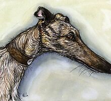 The Look of a Lurcher by Elle J Wilson