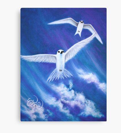 Flying High Fairy Terns Canvas Print
