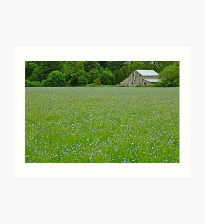 Willamette Valley Landscape Art Print