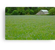 Willamette Valley Landscape Canvas Print