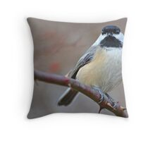 Chickadee Staring At Me Throw Pillow