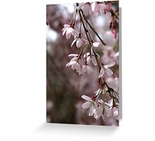 Whisper in the Breeze Greeting Card