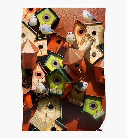 Bird Houses V Poster