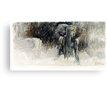 Africa - Charging Elephant Canvas Print