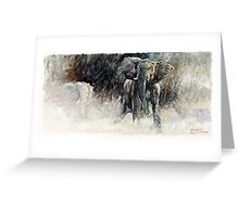 Africa - Charging Elephant Greeting Card