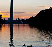 Washington at Sunrise by Dan Lauf