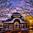 Noddle's Island Pavilion, East Boston  by LudaNayvelt