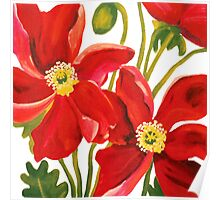 Poppies Red Poster