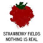 Strawberry Fields by Aleksandra Kurczewska