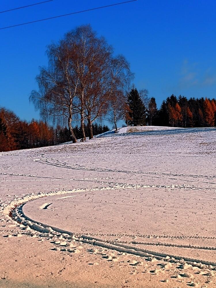 Hiking through winter wonderland III   landscape photography by Patrick Jobst