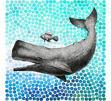 New Friends - Whale & Fish Photographic Print
