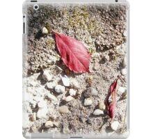 red 2 iPad Case/Skin
