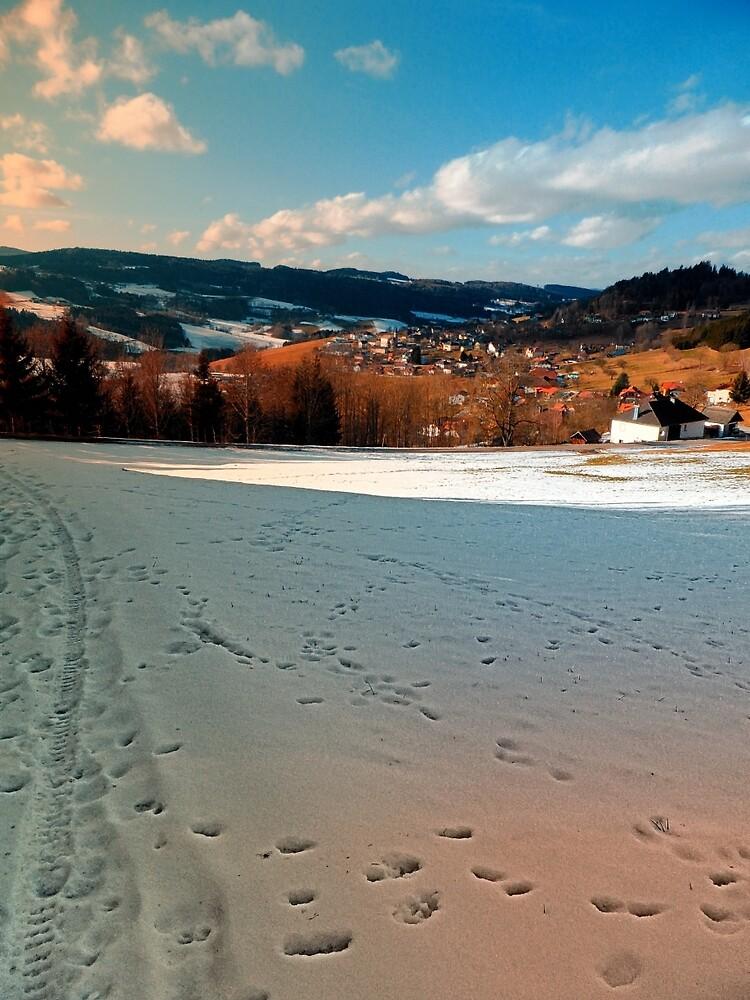 Winter wonderland and village skyline | landscape photography by Patrick Jobst