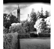 Sather Tower, Berkeley California Photographic Print