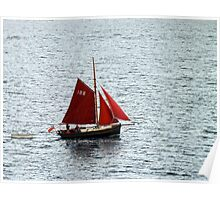 Red Sails in Falmouth Harbour Poster