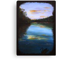 The peaceful river - black swan series #1 Canvas Print